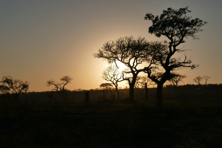 Sunrise Imfolozi