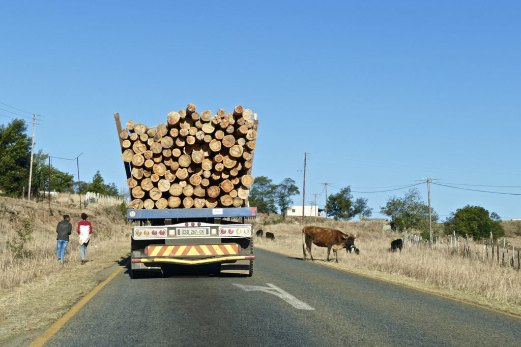 Travel to Swaziland