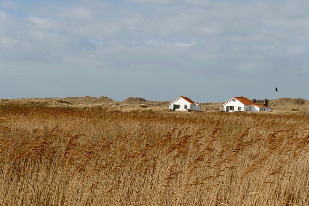 Houses dunes