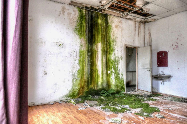Urbex Abandoned Building