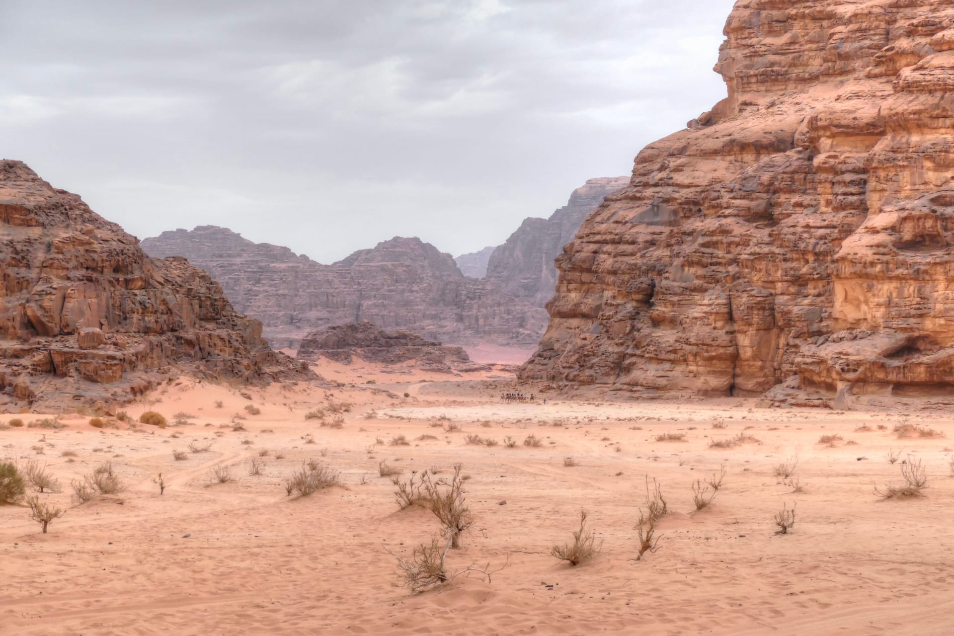 Why visit Wadi Rum