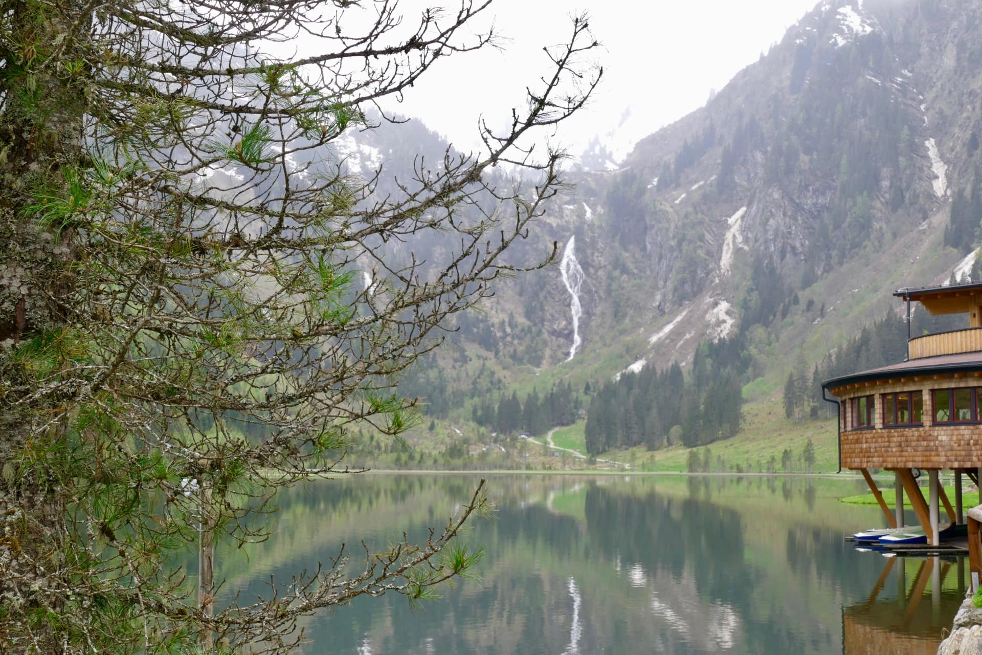 Forellenhof Bodensee Austria